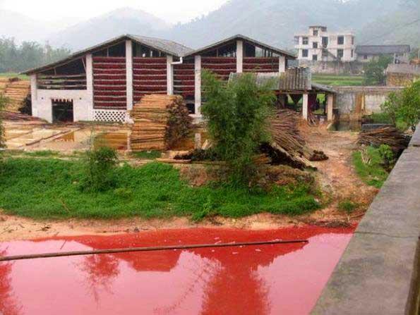 china-environment9.jpg